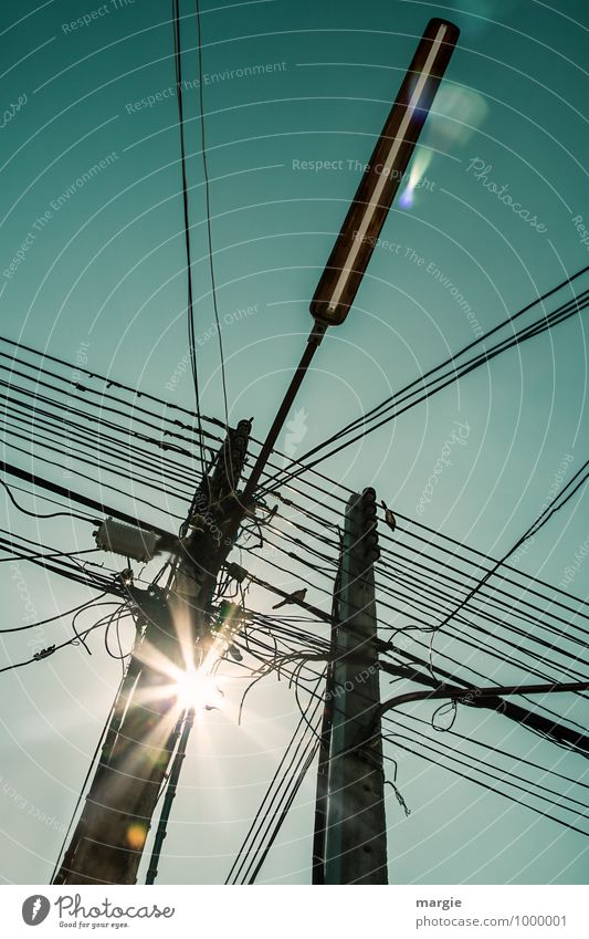 Power cables and lines on masts, birds and a street lamp Cable Technology Advancement Future Telecommunications Information Technology Renewable energy