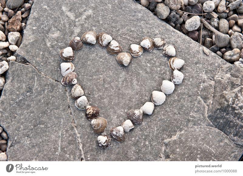 Ocean Heart Elegant Design Happy Art Work of art Environment Nature Summer Lakeside River bank Beach Animal Mussel Stone Sign Love Beautiful Brown Gray Black