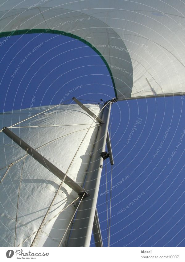 Sails in the wind Sailboat Watercraft Cannes Southern France Europe Wind