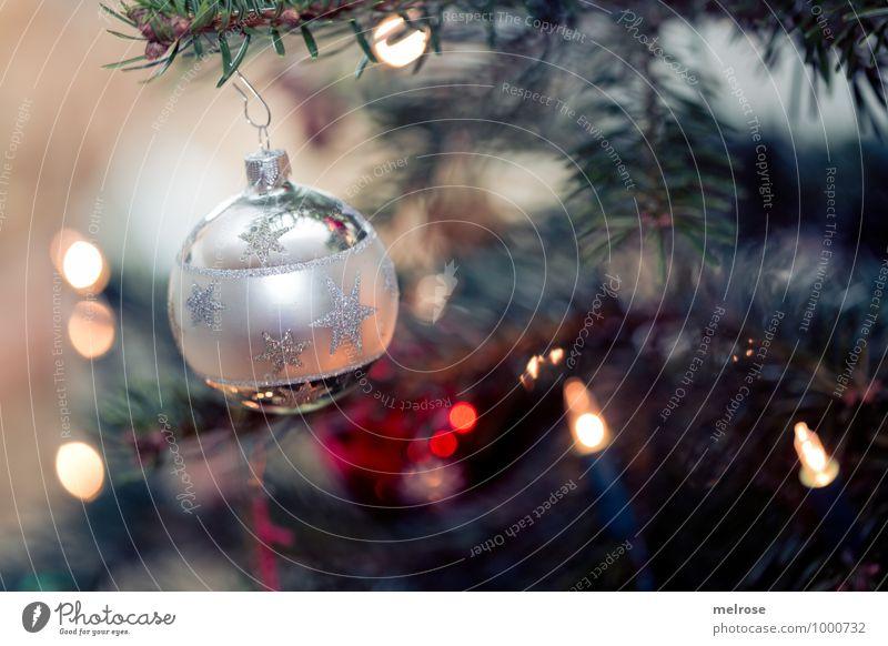 Christmas tree Christmas & Advent christmas balls christmas tree Christmas tree decorations Glitter Ball Blur Fir branch Decoration Plastic Fragrance