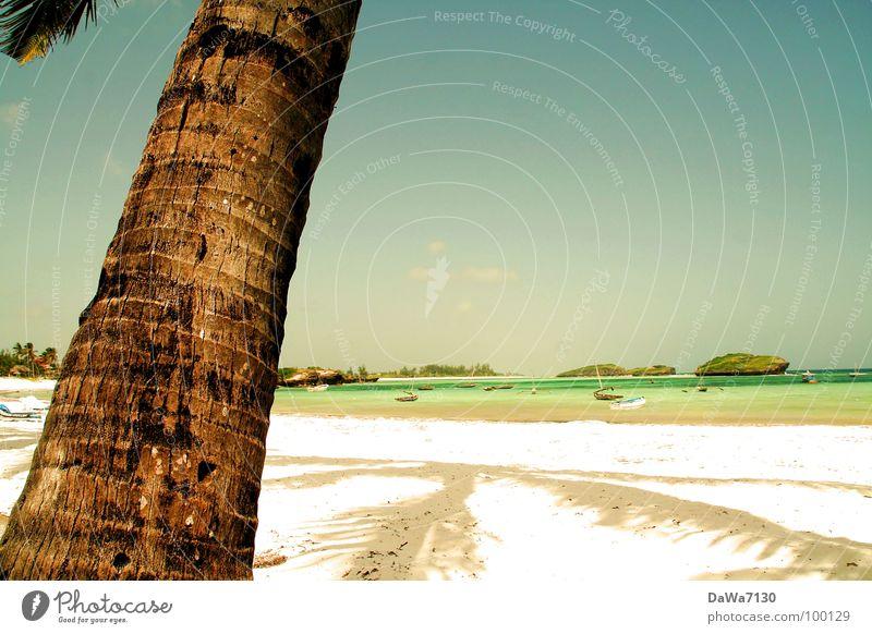 Sun Joy Beach Vacation & Travel Relaxation Sand Coast Africa Palm tree Kenya Coconut