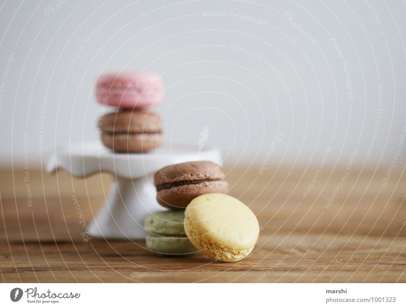 what color do you like? Food Dessert Candy Nutrition Eating Moody Rich in calories Calorie Snack Arranged Food photograph Beautiful Colour photo Interior shot