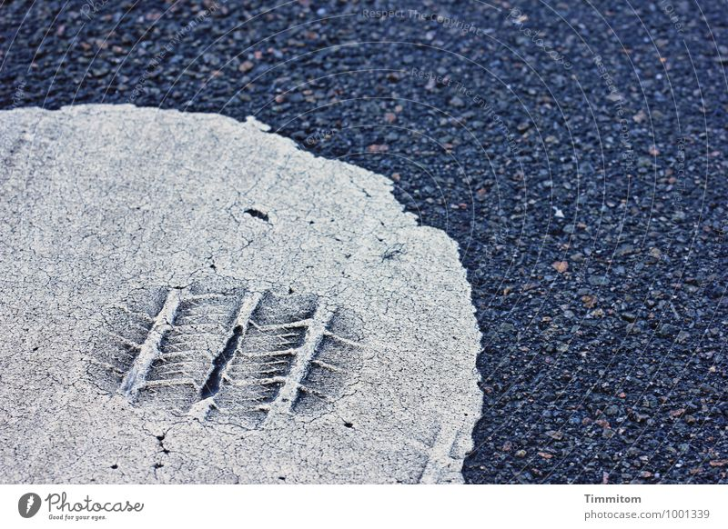 Colour White Street Gray Line Signs and labeling Esthetic Simple Curiosity Tracks Skid marks