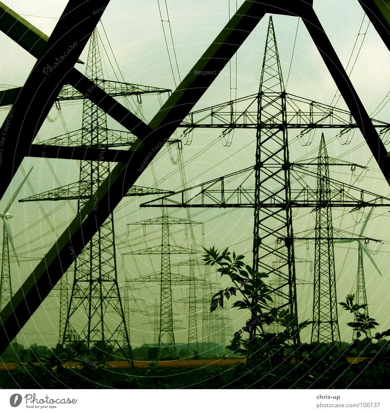 Sky Old Green Tree Black Environment Warmth Wood Line Metal Energy industry Growth Tall Electricity Broken Technology