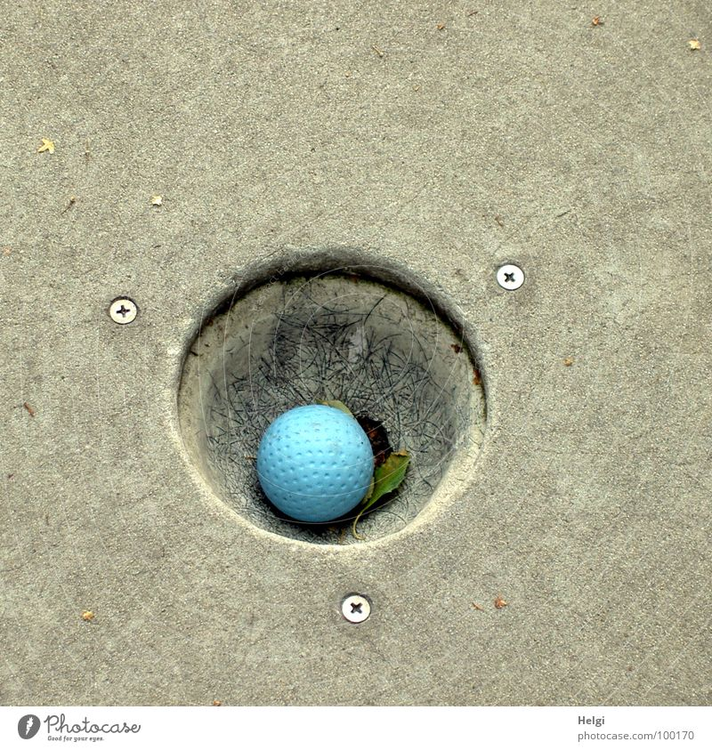 Minigolf ball holed on a minigolf course Mini golf Golf ball Playing Summer Gray Leisure and hobbies Round Sporting event Success Lose Loser Pastime Joy Ball
