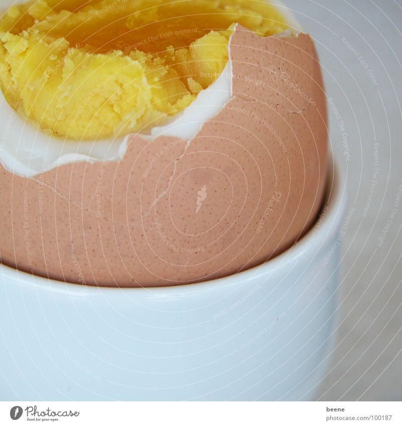 White Yellow Nutrition Brown Healthy Broken Cooking & Baking Breakfast Egg Bowl Barn fowl Yolk Eggshell Albumin Egg cup