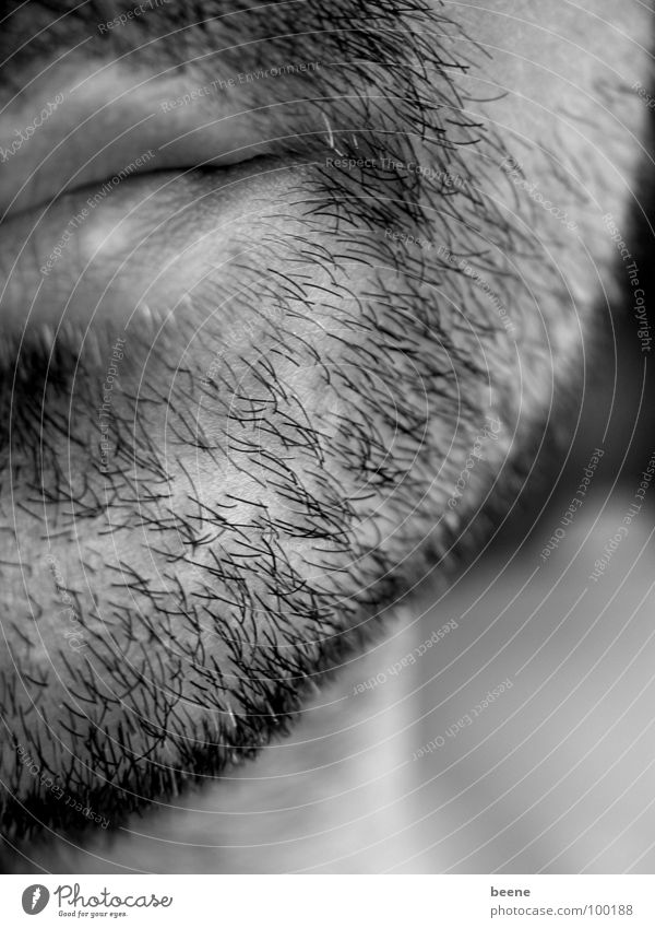black and white stubbles Facial hair Man Chin Lips Stubble Designer stubble Stopper Face Mouth bearded man Hair and hairstyles Partially visible