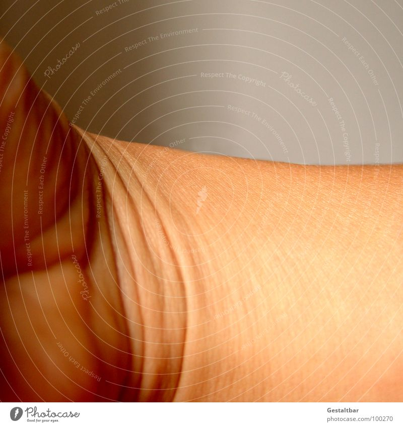Unfolded. Joint Broken Skin color Ball of the hand Dermatologist Anatomy Formulated Macro (Extreme close-up) Close-up Wrinkles Structures and shapes dermatology