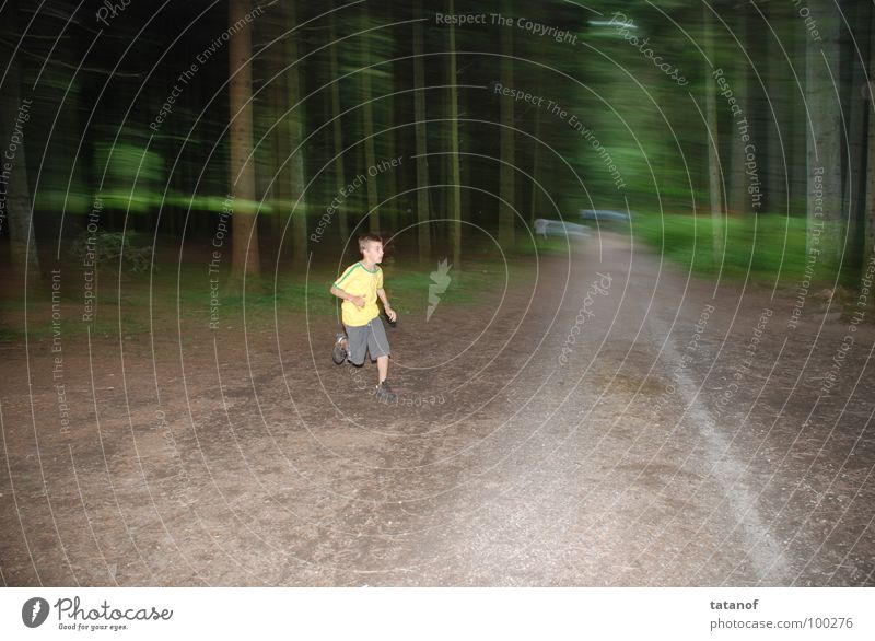 speed Playing Sports Jogging Youth (Young adults) Forest Lanes & trails Running Movement Walking Romp Athletic Free Happiness Healthy Speed Brown Yellow Green