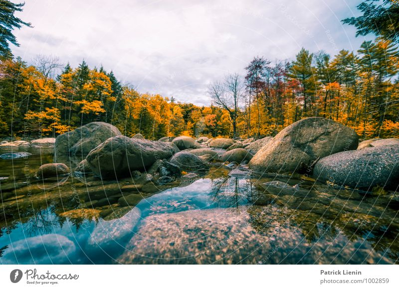 Sky Nature Water Landscape Relaxation Clouds Far-off places Forest Mountain Environment Life Autumn Freedom Rock Tourism Weather