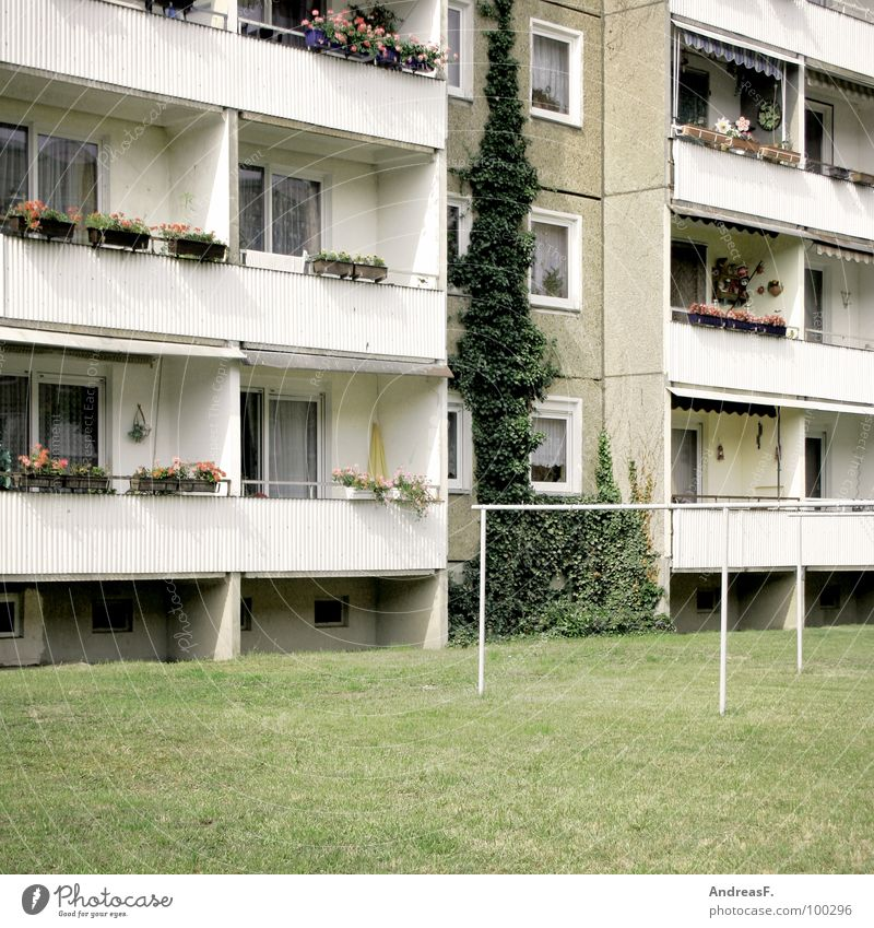 House (Residential Structure) Meadow Window Gray Arm Flat (apartment) Poverty Gloomy Lawn Living or residing Balcony GDR Rent East Social Block