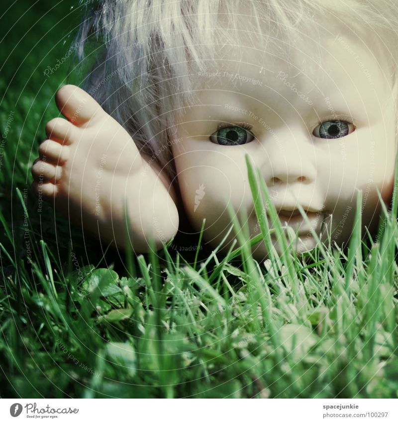 In the grass Toys Threat Alarming Blonde Chucky Creepy Horror film Evil Sweet Cute Whimsical Grass Comfortless Fear Panic Doll Eyes Blue Wild animal