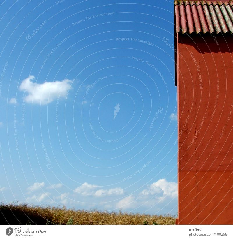 Old Sky Blue Red Summer Calm House (Residential Structure) Clouds Far-off places Wall (building) Orange Field Clarity Crack & Rip & Tear Plaster Canola