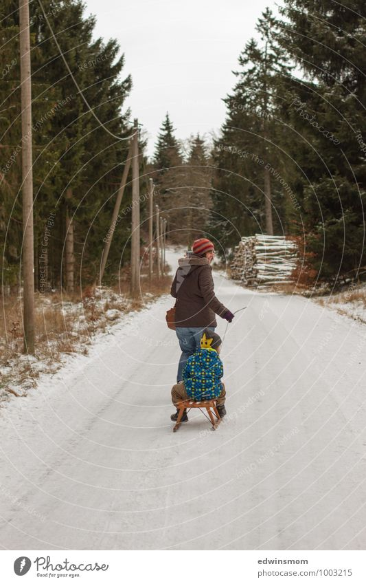 Human being Woman Child Green White Tree Winter Forest Adults Snow Boy (child) Natural Wood Going Family & Relations Ice