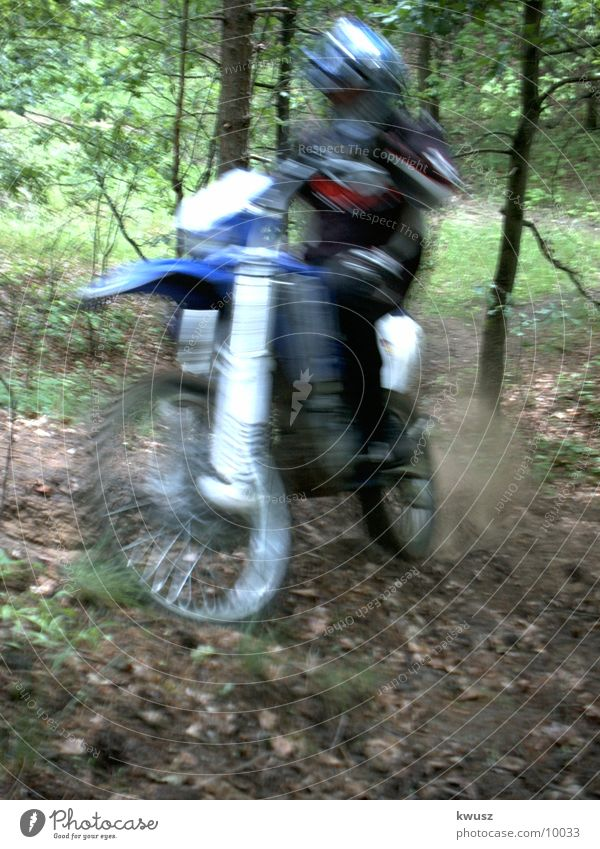 Speed in the forest Motorcycle Forest Green Motorsports cross Blue