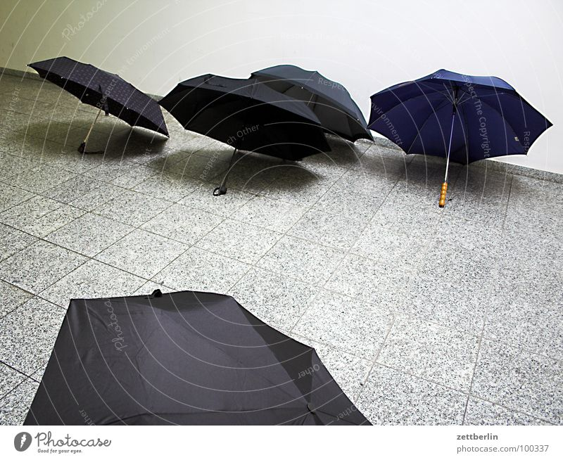 Black Autumn Rain Wet Roof Protection Umbrella 8 Drizzle