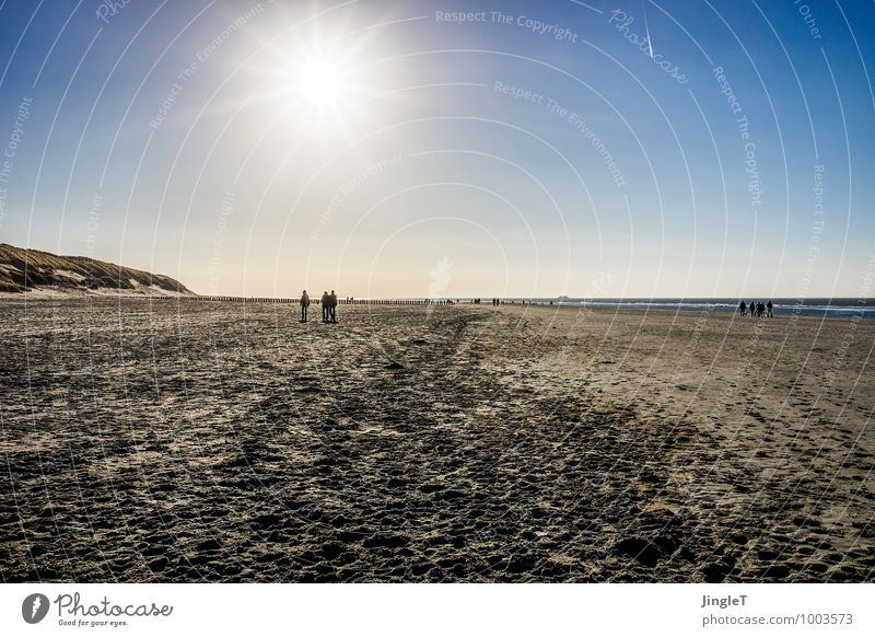 The Arrival Environment Nature Landscape Sand Sky Cloudless sky Sun Sunlight Winter Weather Beautiful weather Coast Beach North Sea Hiking Infinity Blue Brown