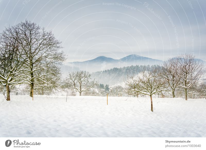 Winter landscape with Mercury (mountain near Baden-Baden) Joy Happy Wellness Life Harmonious Well-being Relaxation Calm Meditation Vacation & Travel Tourism