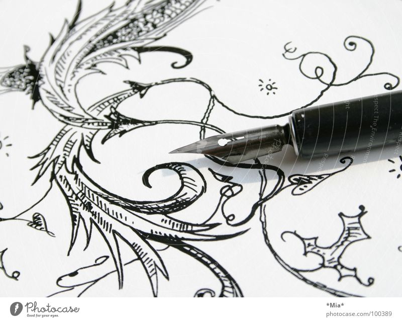 Curlicue II Ink Flower Black White Painted Earmarked Paper Feather Draw Image Shadow