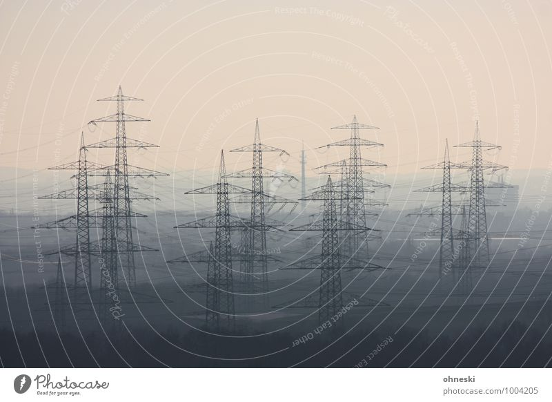 power industry Advancement Future Energy industry Renewable energy Electricity pylon Environment Environmental pollution Growth Colour photo Subdued colour