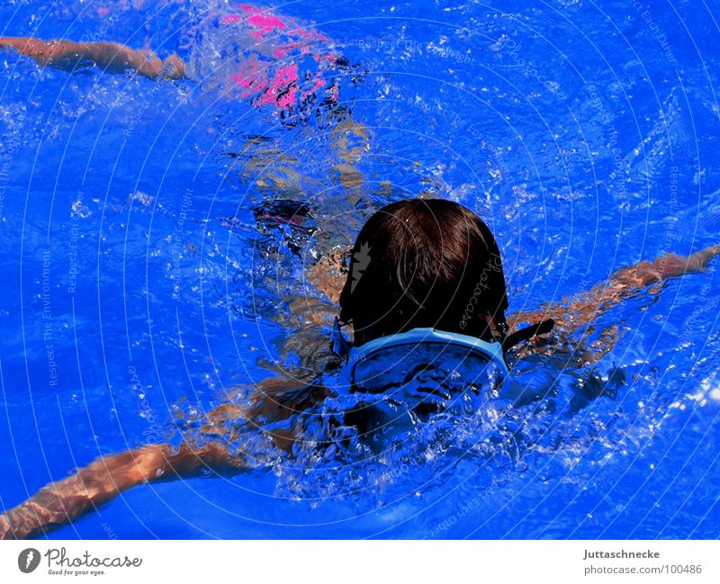 The Diver Swimming pool Summer Sports Playing Blue Juttas snail Joy pool fun