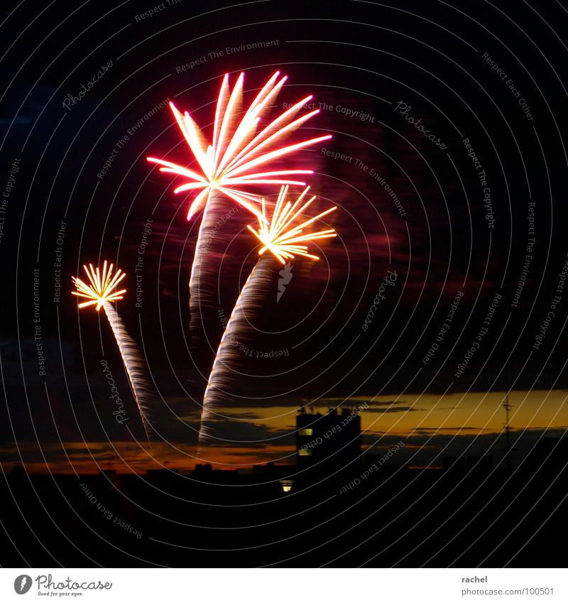 Sky Joy Lamp Dark Party Emotions Happy Feasts & Celebrations Glittering Horizon New Year's Eve Concert Night sky Shows Transience Fantastic
