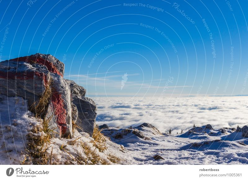 View Over The Clouds Vacation & Travel Tourism Trip Adventure Winter Snow Winter vacation Mountain Hiking Nature Landscape Plant Earth Air Sky Cloudless sky