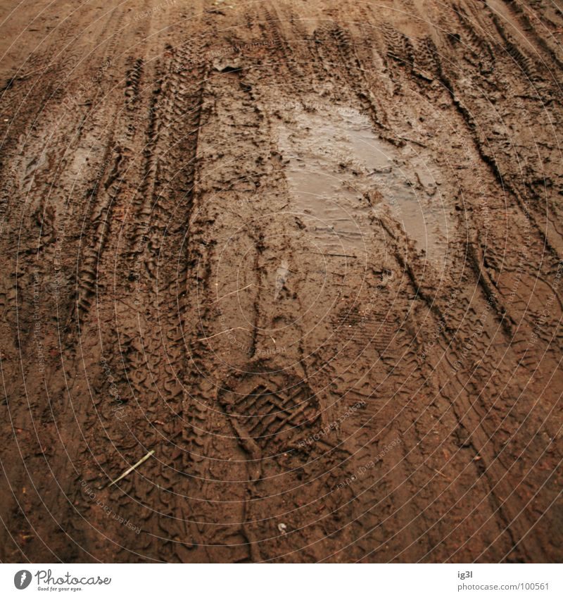 puddle of mud Puddle Dark Exterior shot Footprint Brown Mountain bike Traverse Mud Loam Pattern Square Leisure and hobbies Playground Romp