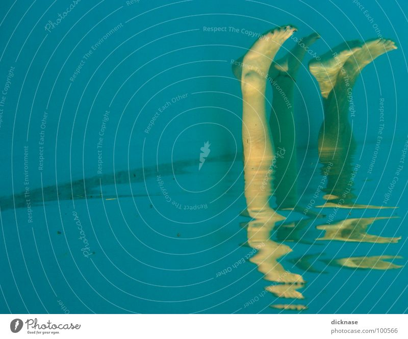 Human being Water Feet Legs Funny Swimming pool Swimming & Bathing Strange Foot bath Synchronic swimming