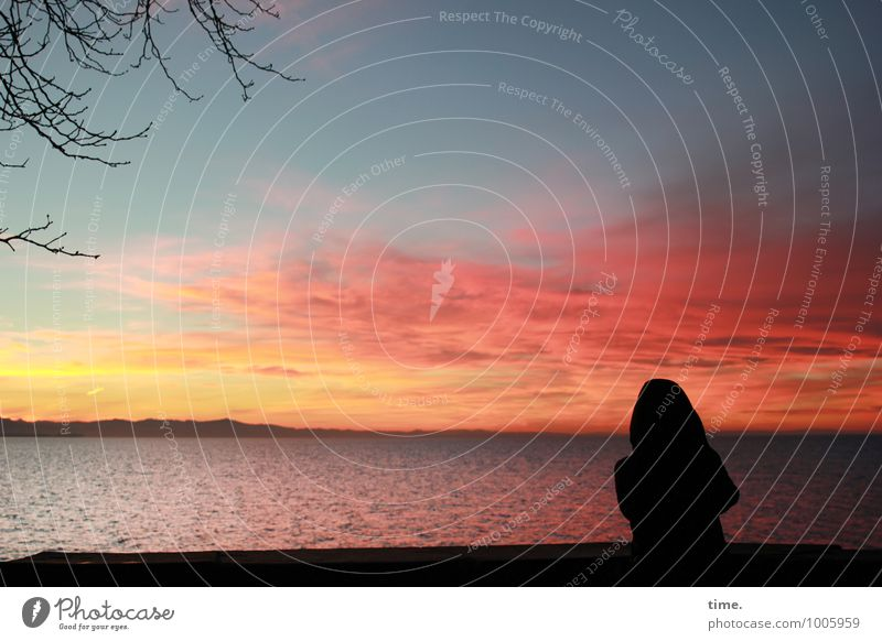 = 1 Human being Water Sky Horizon Winter Tree Waves Coast Lake Constance Observe Stand Exceptional Maritime Beautiful Romance Longing Homesickness Wanderlust