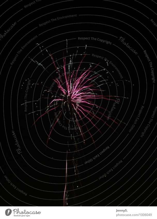 Beautiful Colour White Black Pink Illuminate Happiness Future Transience Hope Infinity Violet Surprise Event New Year's Eve