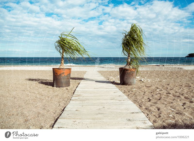 Off on holiday Wellness Well-being Contentment Relaxation Calm Meditation Fragrance Cure Vacation & Travel Tourism Far-off places Nature Landscape Sand Air