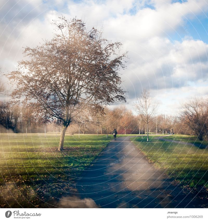 Human being Sky Nature Beautiful Tree Relaxation Landscape Clouds Winter Environment Meadow Spring Lanes & trails Going Moody Park