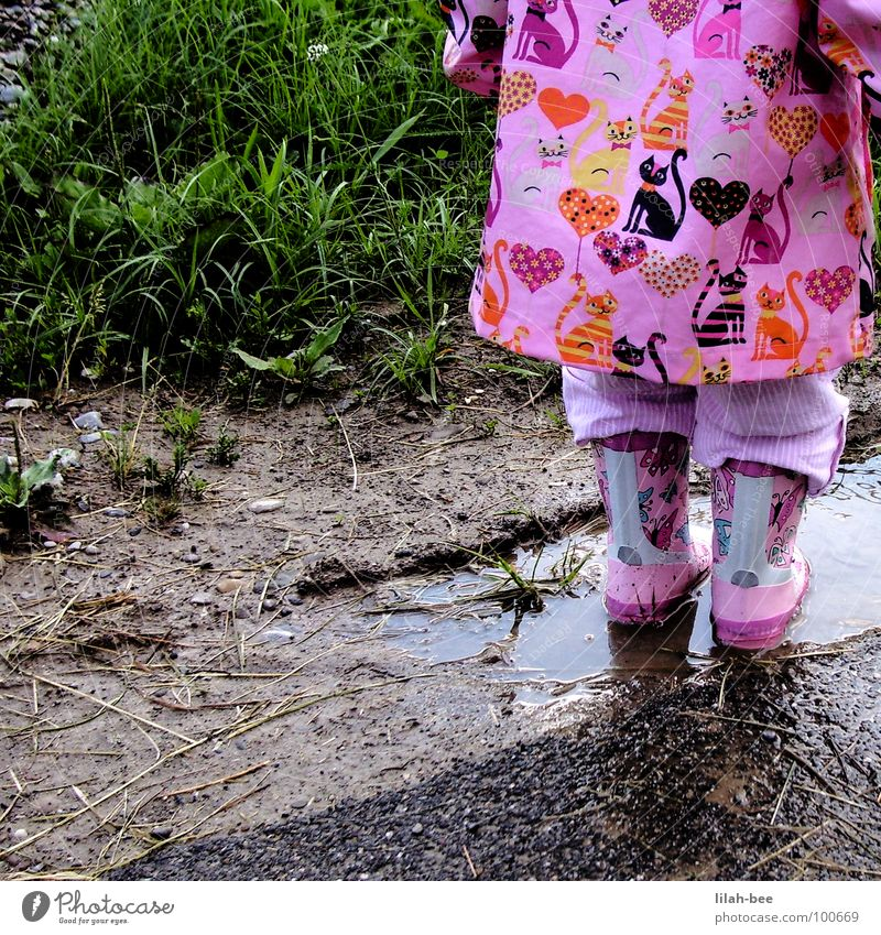 Cat Nature Water Girl Joy Grass Rain Heart Dirty Floor covering Child Toddler Boots Mud Rubber boots Rain wear