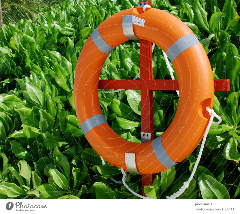 Green Summer Orange Rope Help Circle Safety Bushes Rescue Circular Midday Useful Lifesaving