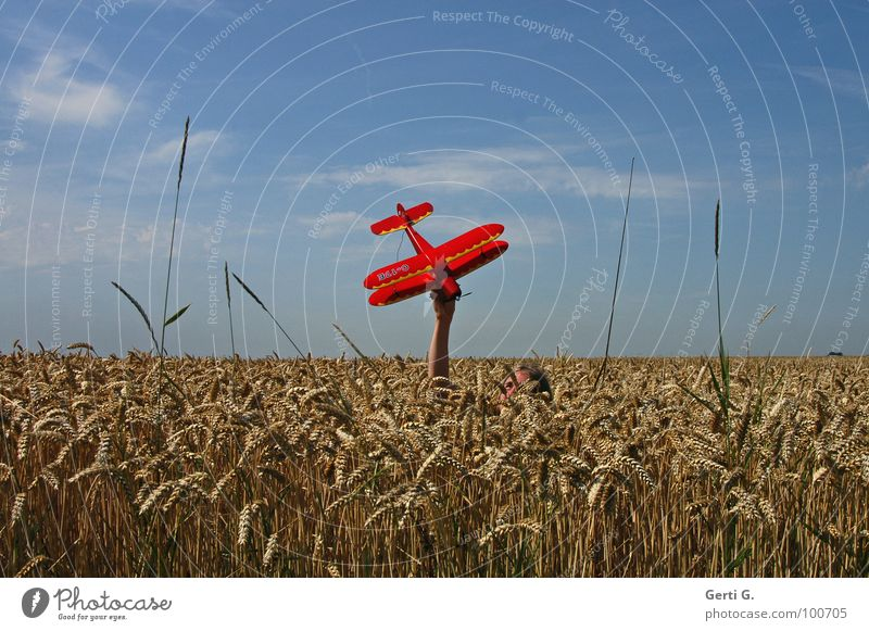 midair Airplane Model aeroplane Cornfield Red Hand Concealed Invisible Camouflage Aircraft Upper body Wheat Cute Wheatfield Grass Dive Model-making Span