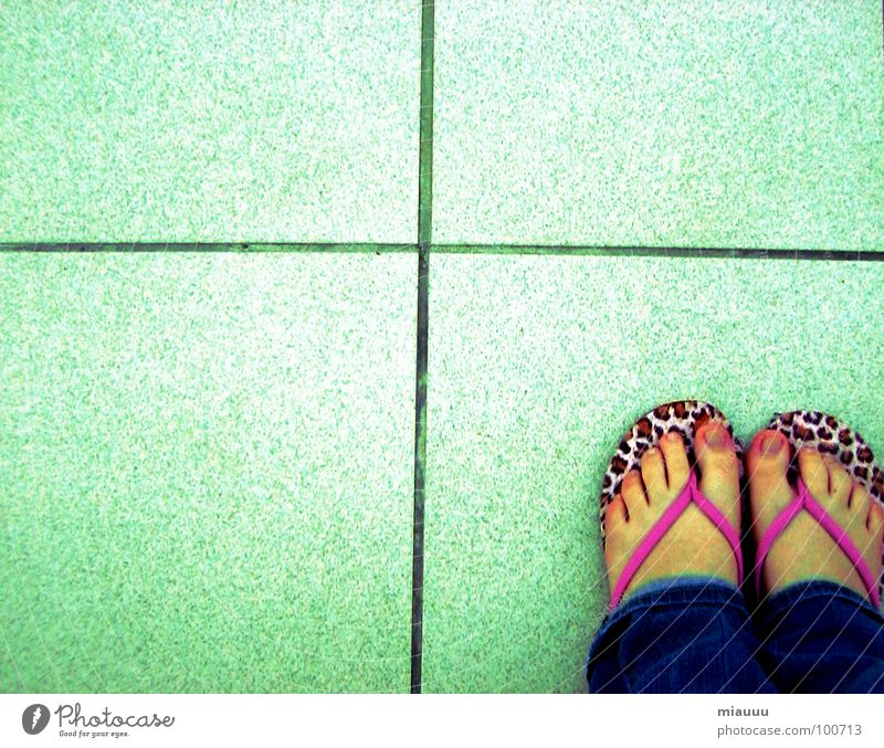 Beautiful Loneliness Feet Back Obscure Cat Panther Flip-flops
