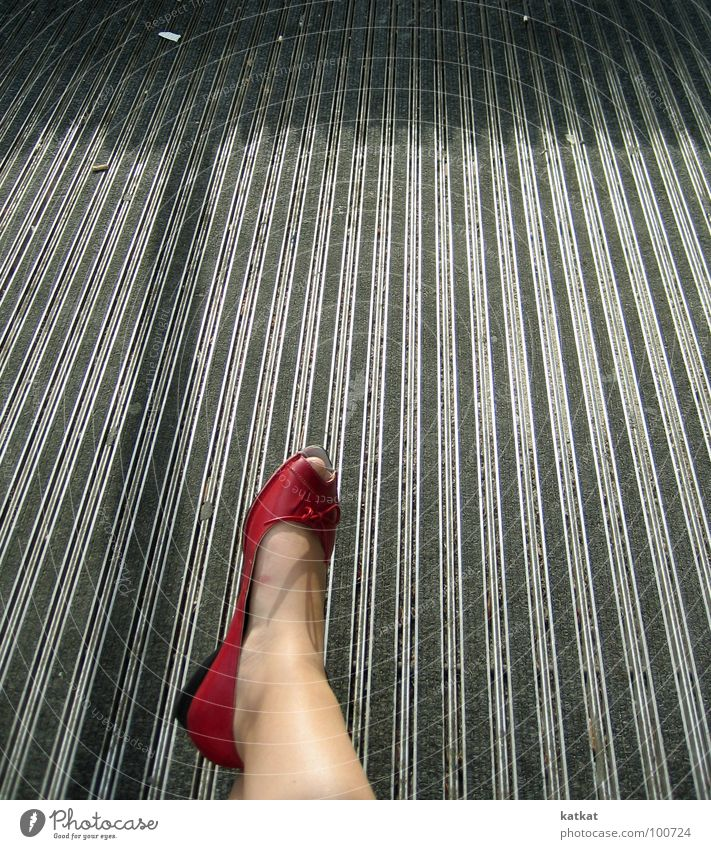 Red Summer Gray Feet Footwear Legs Floor covering Toes
