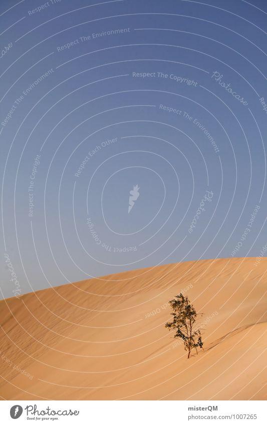 Survival artist II Art Esthetic Contentment Desert Desert plant Sand Dune Warmth Struggle for survival Survival training Survive Blue sky Summer Sahara