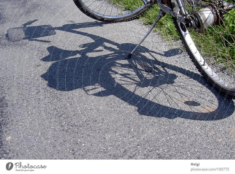 Bicycle casts its shadow on an asphalt road Stand Cycling tour Wheel rim Pillar Basket Spokes Shadow play Break Summer Grass Roadside In transit Joy
