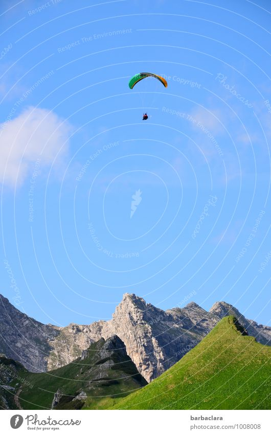 Let him live high! Sports Paragliding 1 Human being Nature Landscape Air Sky Summer Alps Mountain Allgäu Alps Nebelhorn Peak Flying Tall Emotions Joy Brave