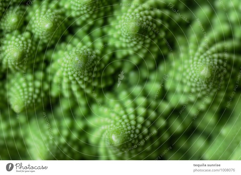 Fibonacci vegetables II Food Vegetable Nutrition Organic produce Vegetarian diet Plant Agricultural crop Romanesco Fresh Healthy Green fractal Colour photo