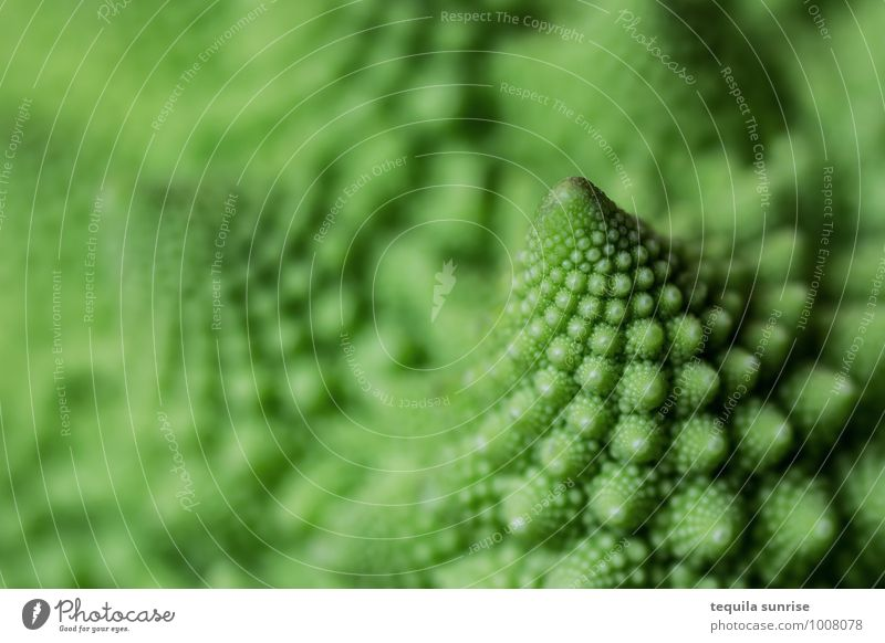 Fibonacci vegetables I Food Vegetable Nutrition Organic produce Vegetarian diet Plant Agricultural crop Romanesco Fresh Healthy Green fractal Colour photo