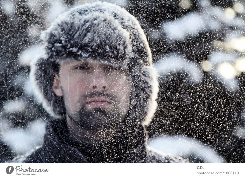 Human being Youth (Young adults) Young man 18 - 30 years Winter Cold Adults Snow Head Snowfall Observe Pelt Facial hair Cap Snowflake Designer stubble