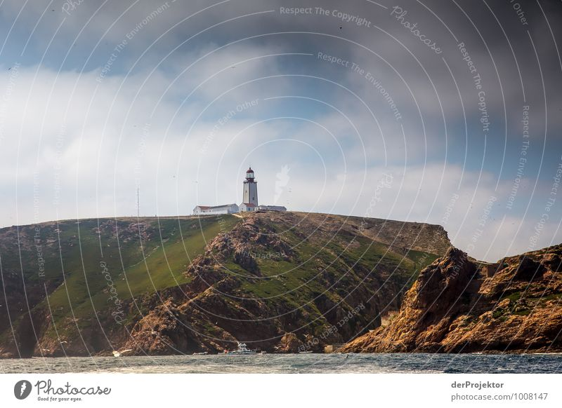 Lighthouse at the Berlengas Vacation & Travel Tourism Trip Adventure Far-off places Freedom Cruise Expedition Summer vacation Environment Nature Landscape Plant