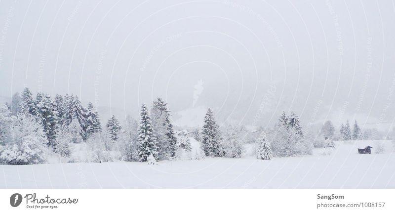 Sky Nature White Tree Landscape Calm Clouds Winter Forest Mountain Snow Snowfall Fog Joie de vivre (Vitality) Beautiful weather Hill