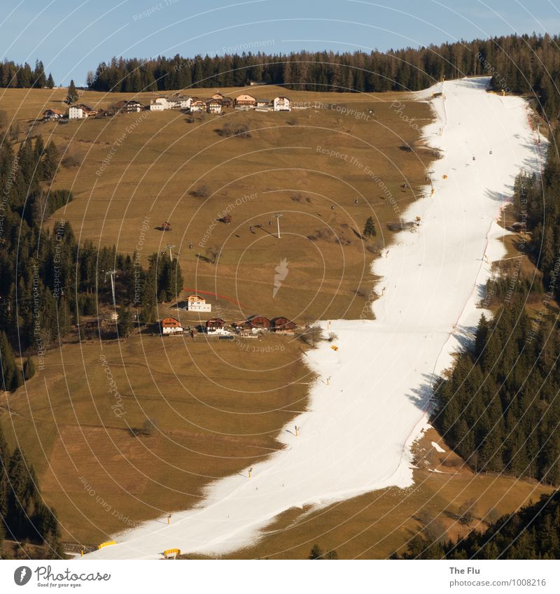 Climate change in winter sports Skiing Ski resort Vacation & Travel Tourism Winter Snow Winter vacation Mountain Environment Tree Grass Forest Alps Italy