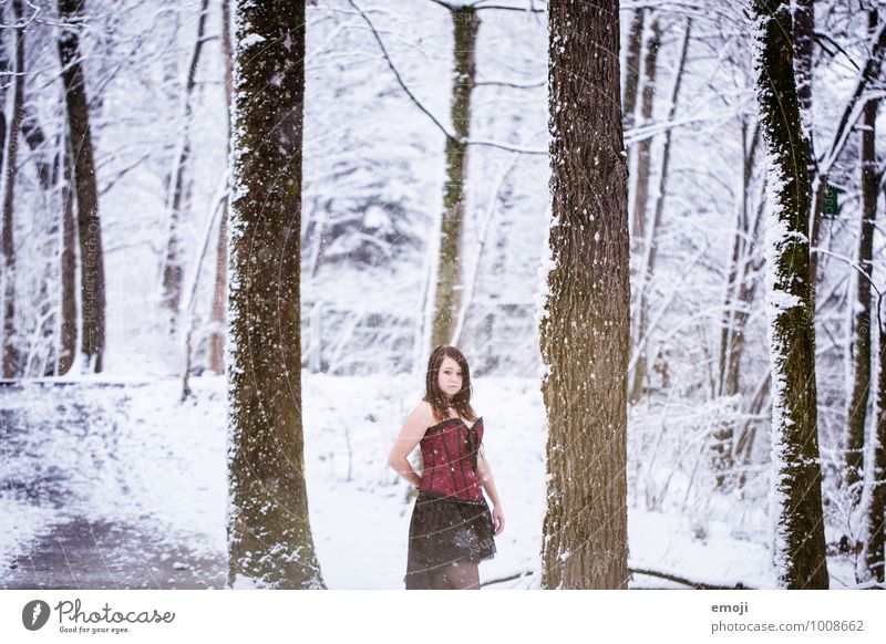 fairy tales Feminine Young woman Youth (Young adults) 1 Human being 18 - 30 years Adults Environment Nature Winter Snow Snowfall Forest Exceptional Cold