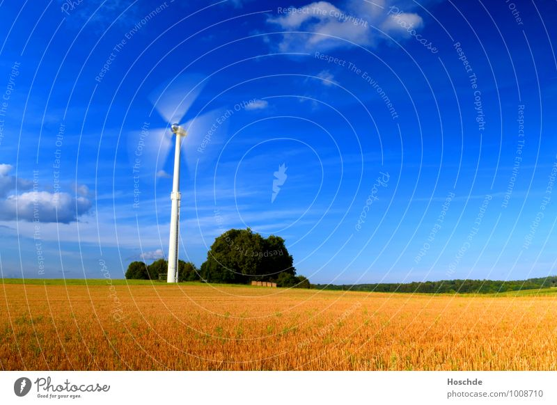 wind power Agriculture Forestry Industry Technology Advancement Future Energy industry Wind energy plant Landscape Clouds Horizon Sunlight Summer