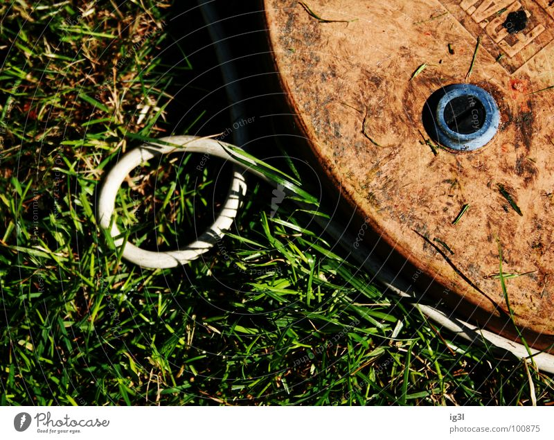 Nature White Green Summer Joy Calm Meadow Grass Garden Orange Dirty Circle Electricity Break Round Cable